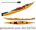 kayak, sea kayak, paddle 36130745
