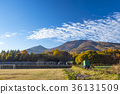 ทัศนียภาพ,ภูมิทัศน์,ฤดูใบไม้ร่วง 36131509