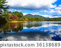 바디 나물 호수의 단풍 나가사키 현 오무 라시 36138689