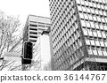 background of the city and the traffic light 36144767