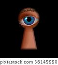 钥匙孔 眼睛 目光 36145990
