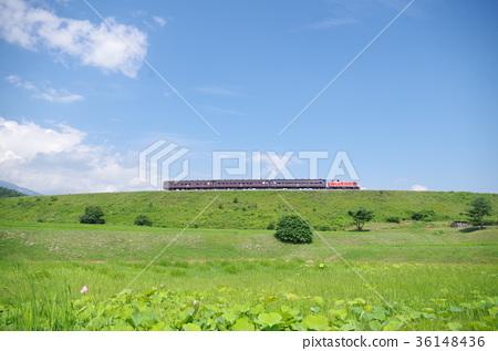 小海線 火車 高原 36148436