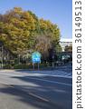 japan, tokyo, shinjuku 36149513