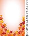 botanic, botanical, maple 36151394