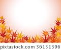 botanic, botanical, maple 36151396