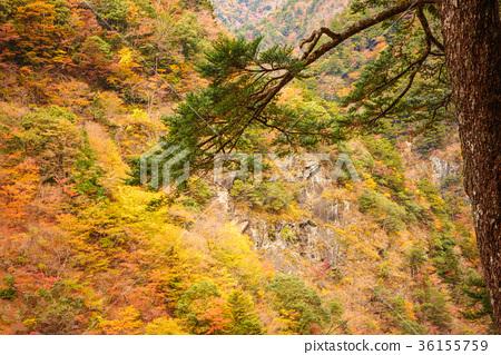 谷景观,深秋的山脉。 36155759