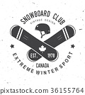 snowboarding, snowboard, vector 36155764