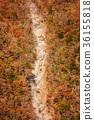 谷景观,深秋的山脉。 36155818