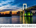 【도쿄】 저녁 레인보우 브릿지 36156633