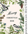 bird botanic christmas 36157599