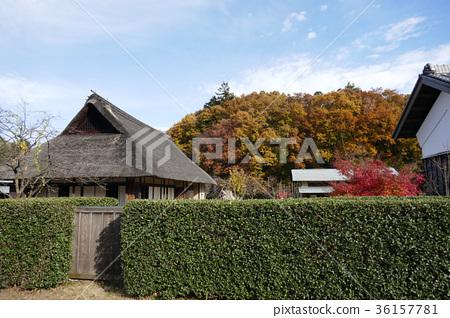 Autumn village house 36157781
