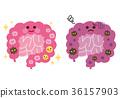 健康的腸道不健康的腸道腸道細菌 36157903