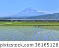 风景 富士山 子弹火车 36165128