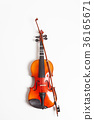 Violin in a white background 36165671
