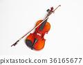 Violin in a white background 36165677