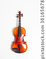 Violin in a white background 36165678