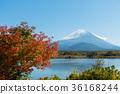 ภูเขาฟูจิ,ภูเขาไฟฟูจิ,ต้นเมเปิล 36168244