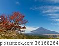 ภูเขาฟูจิ,ภูเขาไฟฟูจิ,ต้นเมเปิล 36168264