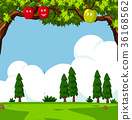 Scene with apple trees and green field 36168562