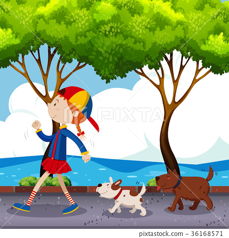 Girl and two dogs walking on street 36168571