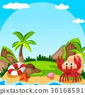 Background scene with hermit crab on island 36168591