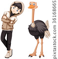 Teenage boy and wild ostrich 36168665