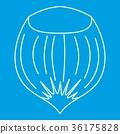 Hazelnut icon, outline style 36175828
