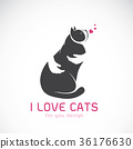 Vector of human hand that hugs the cat. 36176630