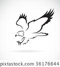 Vector of eagle design on white background. 36176644