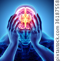 3d illustration of headache human. 36187558