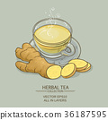 ginger tea illustration 36187595