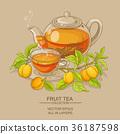 apricot, vector, tea 36187598