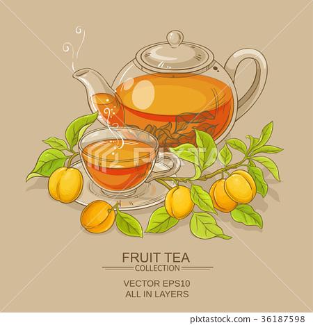 apricot tea illustration 36187598