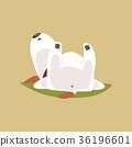 动物 宠物 睡觉 36196601