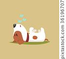 宠物 睡觉 狗 36196707