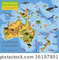 Australia and Oceania flora and fauna map 36197801