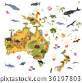 Australia and Oceania flora and fauna map 36197803