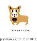 dog corgi doggy 36201011