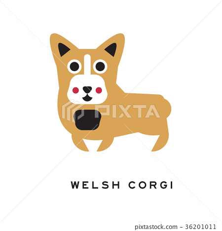 Funny welsh corgi dog character in cartoon style 36201011