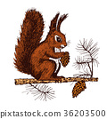 Christmas squirrel and animal with fir-cone in the 36203500