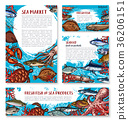 Vector seafood posters of sketch fresh fish 36206151