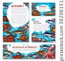 海鲜 市场 草图 36206151