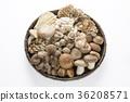 버섯, 식자재, 요리 재료 36208571