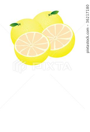 Cut fruit grapefruit 36217180