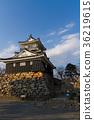 滨松城冬季[静冈县] 36219615