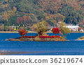 가와구치 호수, 단풍, 가을 36219674