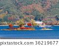 가와구치 호수, 가을, 호수 36219677