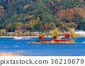 [จังหวัดยะมะนะชิ] ทะเลสาบคาวากุจิฤดูใบไม้ร่วงหกเหลี่ยม 36219679
