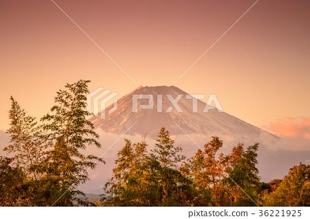ชมพระอาทิตย์ตกของภูเขาไฟฟูจิและทาเคบาชิ 36221925