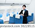 cabin, attendant, female 36228515